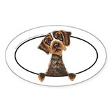 WIrehaired Pointing Griffon Peeking Bumper Decal