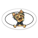 Yorkshire Terrier Yorkie Peeking Bumper Decal