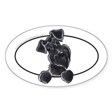Black Schnauzer Peeking Bumper Bumper Stickers