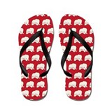 Republican Flip Flops