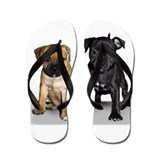 Staffie puppies Flip Flops