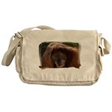 Orang Male 7364 Messenger Bag