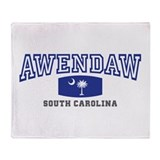Awendaw South Carolina, SC, Palmetto State Flag S