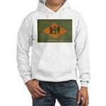 Delaware Flag Hooded Sweatshirt