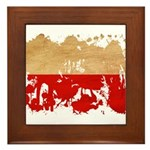 Poland Flag Framed Tile