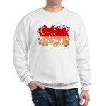Singapore Flag Sweatshirt