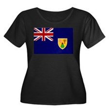 Turks and Caicos Flag T