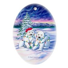 Northern Lights Keepsake Porcelain Ornament (Oval)