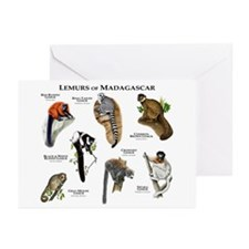 Lemurs of Madagascar Greeting Cards (Pk of 10)