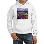 Can You Find Jesus? Hooded Sweatshirt