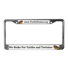 Eastern Box Turtle License Plate Frame