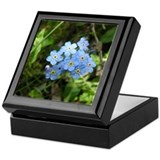 Forget-Me-Not #01 Keepsake Box