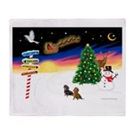 XmasSigns/2 Dachshunds Throw Blanket