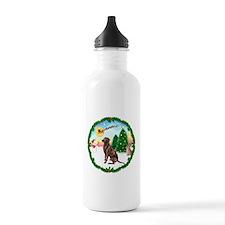 Take Off1/Lab (choc) Water Bottle