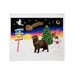 XmasSigns/Newfie Throw Blanket