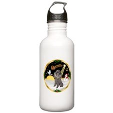 Night Flight/Silver Poodle Water Bottle