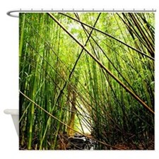 Bamboo Forest Hawaii Shower Curtain