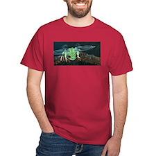 Wishing Frog II T-Shirt
