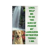 Cute Labrador retrievers Rectangle Magnet