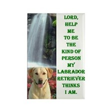 Funny I love my labrador Rectangle Magnet