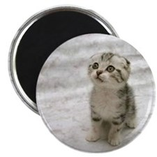 "Unique Cue 2.25"" Magnet (10 pack)"