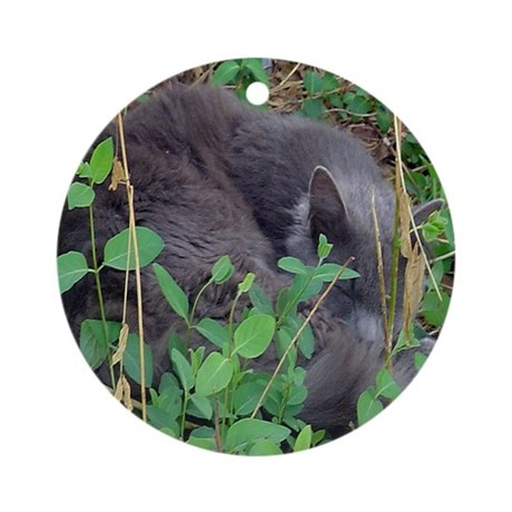 Kitten in Honeysuckle Ornament (Round)