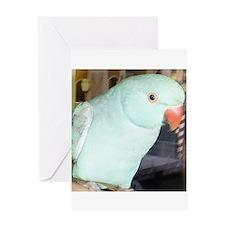 Indian Ringneck Parakeet Greeting Card
