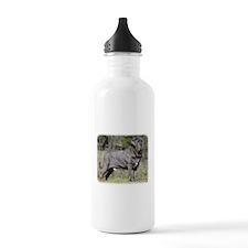 Neapolitan Mastiff AA021D-045 Water Bottle