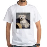 Cute Schnoodle Shirt