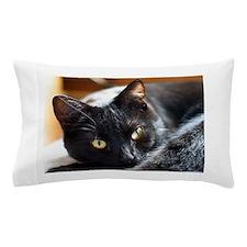 Sleek Black Cat Pillow Case