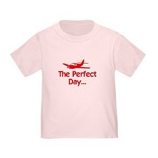 Perfect Day Airplane T