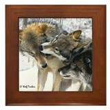 Wolf Timbers Pack Framed Tile