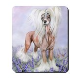 Crested Blue Bonnets Mousepad