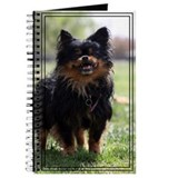 Journal (Bullwinkle) Tibetan Spaniel