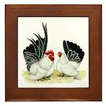 Japanese Black White Bantams Framed Tile