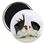 Japanese Black White Bantams Magnet