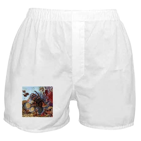 Ocean Window Boxer Shorts