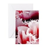 Pink Tulips Blank Greeting Card
