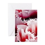 Pink Tulips Blank Greeting Cards (Pk of 10)