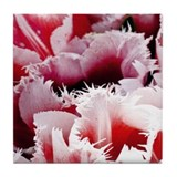 Pink Tulips Tile Coaster