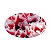 Pink Tulips 38.5 x 24.5 Oval Wall Peel