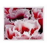 Pink Tulips Throw Blanket