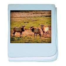 3 Bull Elk, Psalm 50:11 baby blanket
