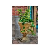 Ivy Urn Rectangle Magnet