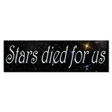 Stars Died for Us Car Sticker