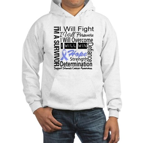 Stomach Cancer Persevere Hooded Sweatshirt