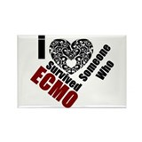 ECMO01.jpg Rectangle Magnet (100 pack)