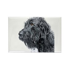Black Labradoodle 4 Rectangle Magnet (100 pack)