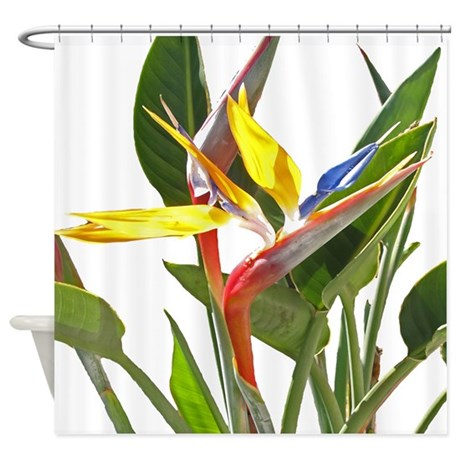 Birch Tree Fabric Curtains Bird of Paradise Towel