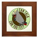 I Can Talk, Can You Fly: African Grey Timneh Frame